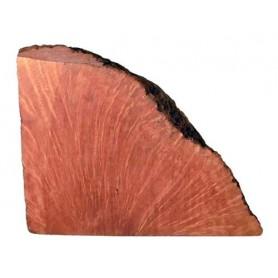 Chapa de brezo