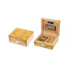 Caves de peuplier par 50 cigares